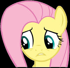 Pony Memes - create meme fluttershy fluttershy fluttershy pony memes
