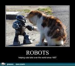 Herding Cats Meme - books crafts pretty things blog cat thursday robots