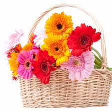 cheap flowers to send http niceflowerdelivery hatenablog lovely yet cheap flowers