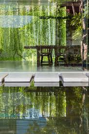 Green Shades by Modern Babylon Hanging Plants Serve As Green Walls U0026 Window