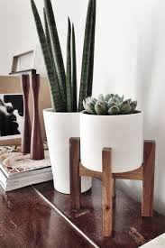best 25 plant decor ideas on pinterest house plants modern pots for indoor plants best 25 indoor planters ideas on