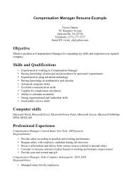 Branch Operations Manager Resume 100 Branch Manager Resume Sample Resume Risk Management