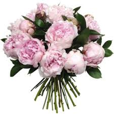 peony flower delivery local city florist in rome italy flower delivery to rome italy in