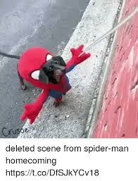 Spider Man Meme - 25 best memes about spider man homecoming spider man