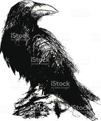 halloween raven background black and white raven clip art vector images u0026 illustrations istock