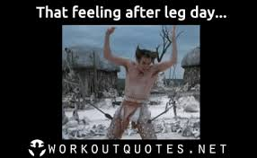 Feeling Memes - gyme memes that feeling after leg day workout quotes