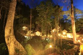 khao sok rock and treehouse resortrock and treehouse resort