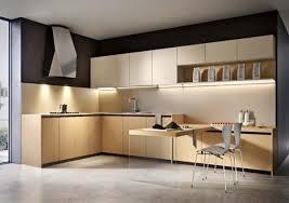 Kitchen Design Options Kitchen Cabinet Design Options And Concepts Interior Design