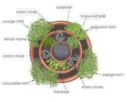 Indoor Vegetable Container Gardening - overhead view of herb tower container garden creative edible