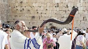 buy shofar horn the shofar the horn of plenty the chronicle