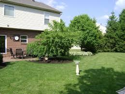 spring cleanup melena landscaping cincinnati ohio