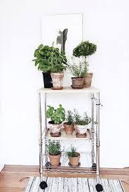 bittergurka led indoor herb garden diy hanging herb garden ikea