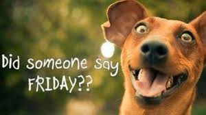 Friday Memes - 15 reasons people who say happy friday should be smacked