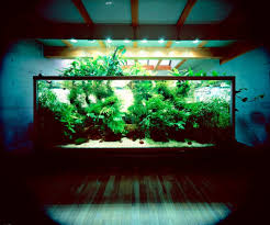 Asian Wooden Floor Chic Aquarium Stand Design For Asian Interior Style With Sparkling