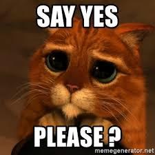 Yes Please Meme - say yes please shrek cat v1 meme generator
