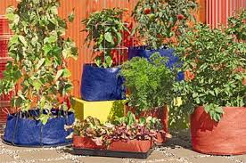Creative Vegetable Gardens by Container Gardening The Creative Vegetable Gardener Blog Grit Magazine