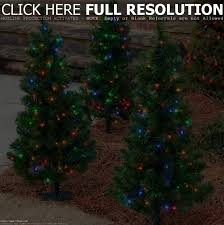 images of small outdoor christmas trees home design ideas
