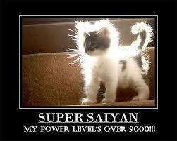 Its Over 9000 Meme - it s over 9000 meme by likeaboss memedroid