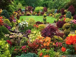 home flower garden designs pics on awesome backyard perennial