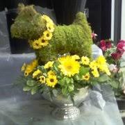 elkton florist elkton florist florists 132 w st elkton md phone number