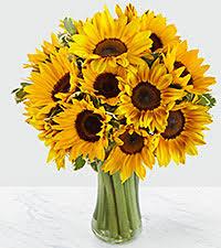 flowers for men flowers for men gifts gift baskets for men delivered ftd