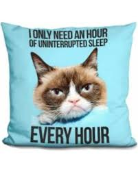 Grumpy Cat Sleep Meme - memorial day s hottest sales on lilipi grumpy cat meme decorative