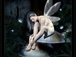 dark fairy wallpapers wallpapersafari