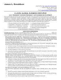 Sle Resume Business Development Director business development representative sle resume shalomhouse us