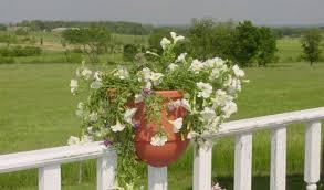 plant beautiful fence planters contemporary landscape beautiful