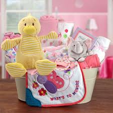 the 25 best baby gift baskets ideas on gift