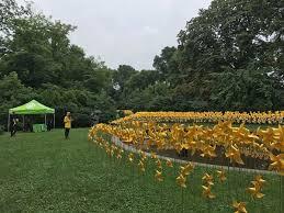 Prospect Park Botanical Garden Pinwheels In Prospect Park Bridge Realty