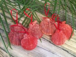caribbean seashell ornament set sea 2 land designs