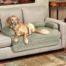 Dog Chaise Sofas Fabulous Ultimate Pet Furniture Extra Long Sofa Cover With