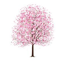 pink cherry blossom tree vector dragonartz designs we moved to