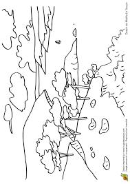 coloriage dessin feuilles d u0027automne en vrac coloriages