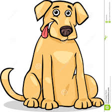 labrador retriever dog cartoon illustration royalty free stock