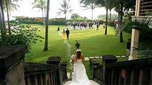 Wedding Organizer Wedding Organizer