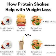 protein shakes for weight loss dr spencer nadolsky