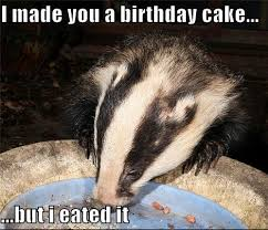 i made you a birthday cake but i eated it nick hayward