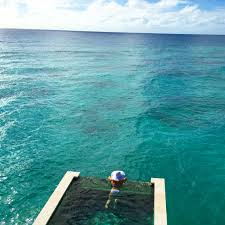 wanderlust wednesday the maldives u2022 the lush list dallas