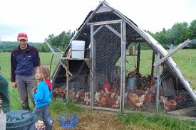 a frame chicken house plans home design and style