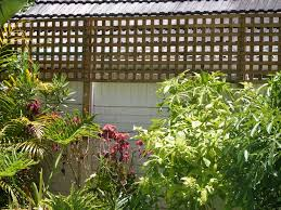 garden trellises cape town home outdoor decoration