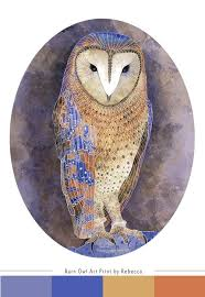 printable owl art 69 best owls art images on pinterest barn owls owls and birds