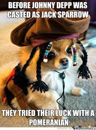 Pomeranian Meme - jack pomeranian by starlit8910 meme center