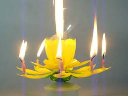 spinning birthday candle 515 spinning musical birthday flower candle