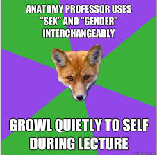 Fox Meme - anthropology fox meme savage minds