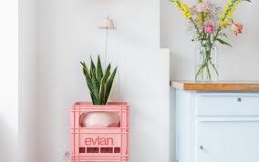 Best Plants For Bathroom Contemporary Design Of Indoor Green Plants Charming Wooden Garden