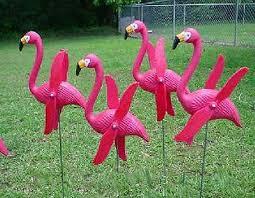 best 25 pink flamingos lawn ornaments ideas on papier