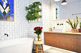 10 Perennials That Thrive In by 10 Plants That Thrive In Humid Spots A K A Your Bathroom