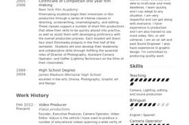 Video Production Resume Samples by Film Producer Resume Sample Reentrycorps